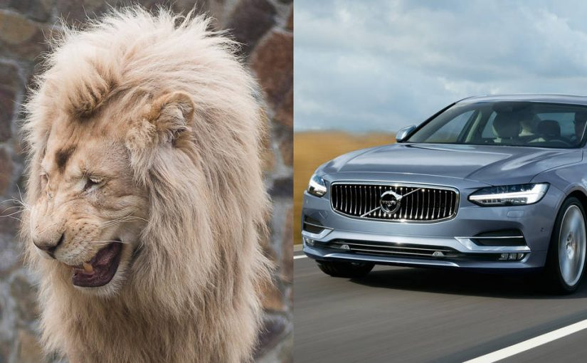 Designers Look to Ballerinas, Lions for Inspiration to Revamp the Family Car